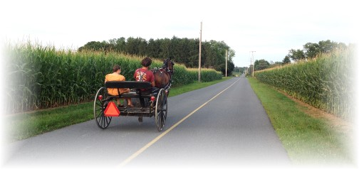 Amish cart on Carmany Road 7/21/14