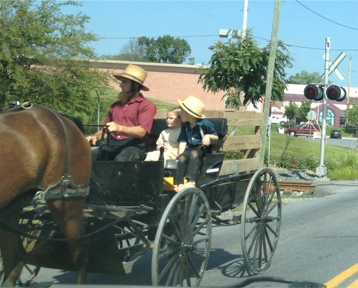 Amish father and children near New Holland, PA 9/4/14)