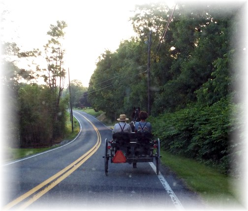 Amish open cart on Donegal Springs Road 6/17/14