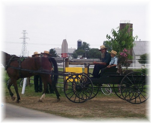 Amish pickup leaving the Lancaster County Carriage & Antique Auction in Bird In Hand PA.