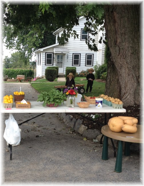 Amish roadside stand with children, Lancaster County, PA 10/2/14