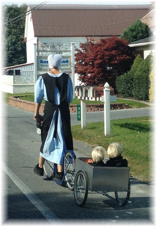 Amish mother and sons 10/21/15