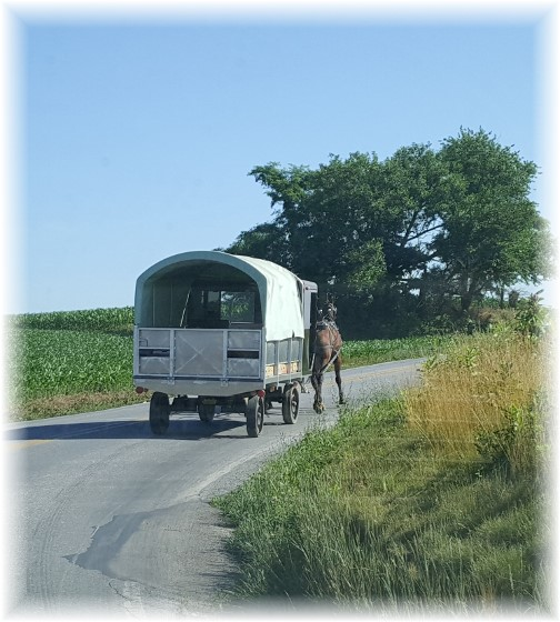 Amish semi, Lancaster County, PA 6/30/16