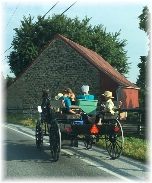Amish family on spring wagon 7/13/17