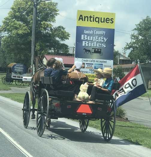 Amish on spring wagon, Lancaster County, PA 8/8/19