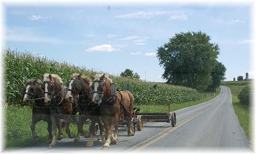 Amish team 8/17/16