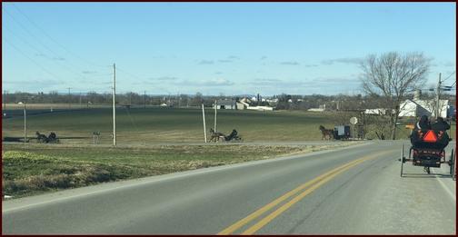 Amish traffic on Paradise Lane 1/6/19