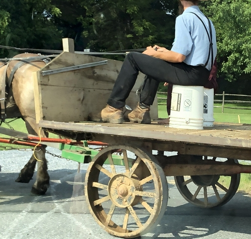 Amish horse-drawn wagon, Lancaster County, PA 8/8/19
