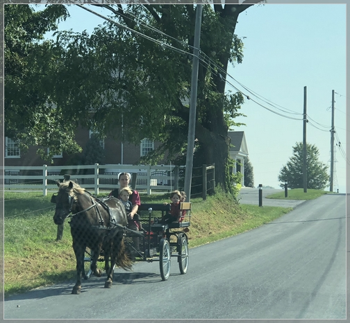Amish team and wagon, Lancaster County Amish farm 9/6/18 (Click to enlarge)