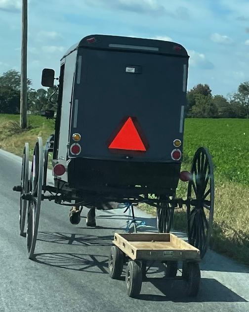 Amish buggy pulling wagon