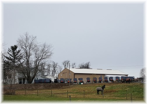 Amish Wedding 12/8/16