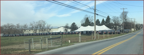 Amish wedding parking in Lancaster County, PA 11/29/18 (Click to enlarge)