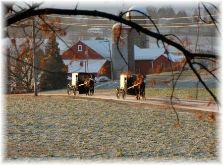 Amish winter scene (Doris High)