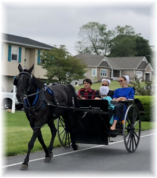 Amish youth going to youth group 5/27/18