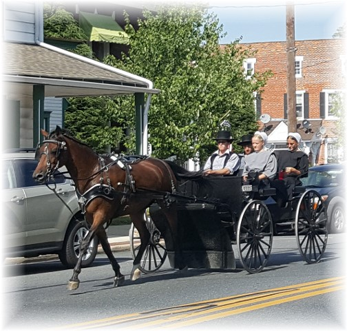 Amish youth in Mount Joy, PA 7/17/16