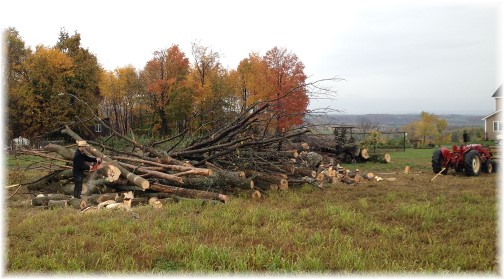 Amish men cutting firewood in New York 10/18/14