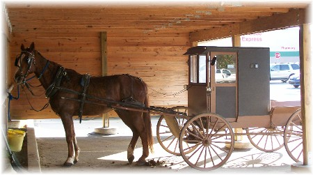Brown Amish buggy, Chester County, PA