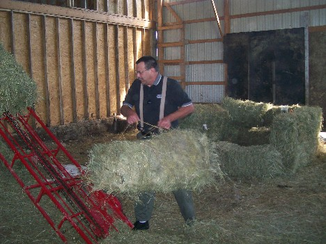 Bucking hay on an Amish farm 6/11/10
