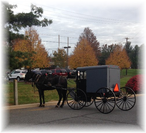 Decorated wood cart 10/31/15