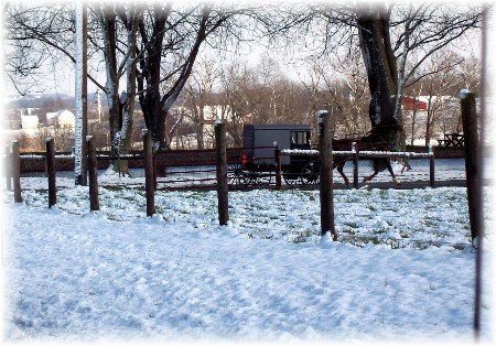 Amish buggy in snow Lancaster County, Pennsylvania