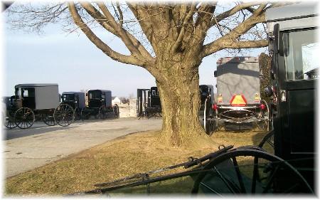 Amish buggies at home viewing 2/1/10
