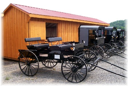 Buggies for sale at Amish sale in Perry County PA