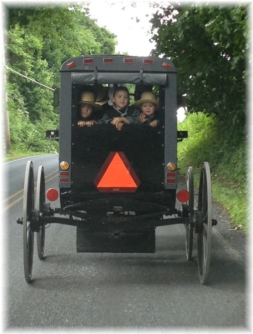 Amish buggy 5/31/15