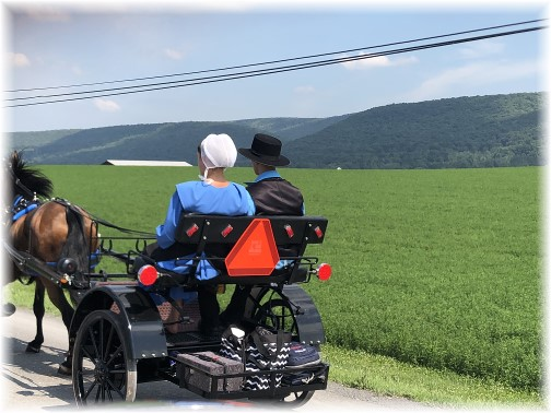 Centre County, PA Amish youth 7/1/18