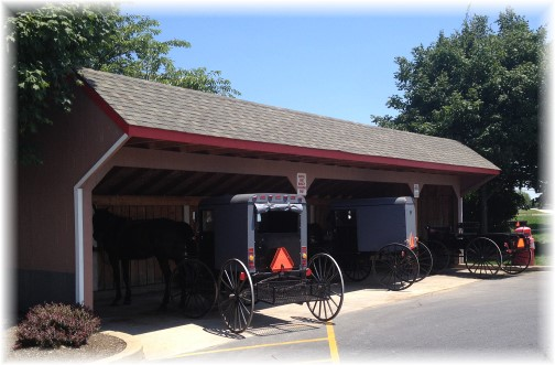 Costco Amish parking shed 7/16/15