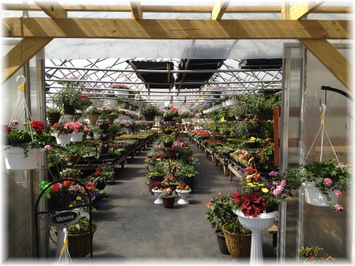 Creekside greenhouse