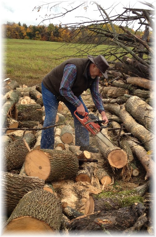 Cutting firewood in New York 10/18/14