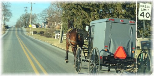Dual horsepower buggy, Lancaster County, PA 1/19/14