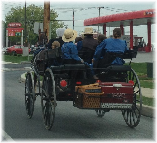 Amish family off to picnic 5/5/15 (Click to enlarge)