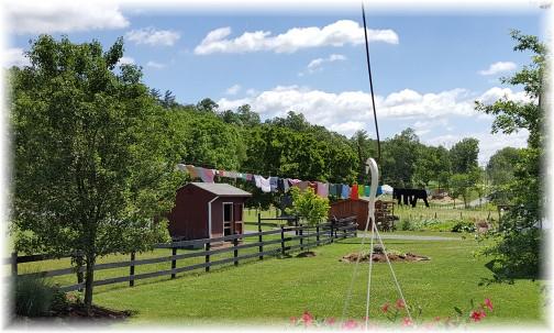 Amish farm near Fearnot, PA 6/20/17