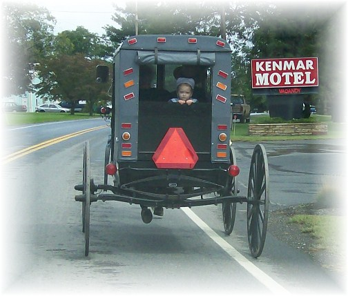Franklin County Amish buggie 9/9/12