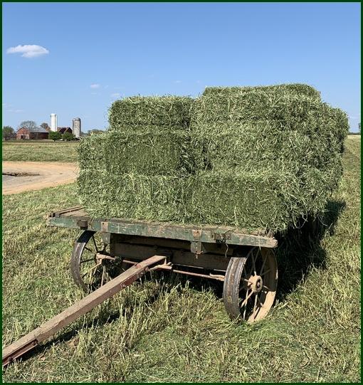 Hay wagon, Landisville Road