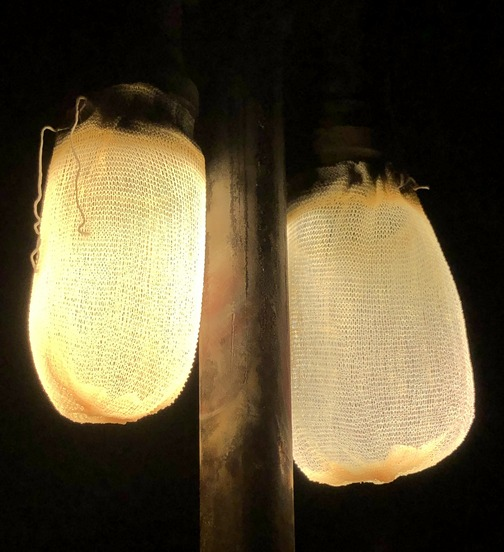 Gas lanterns in Lapp home 12/24/19