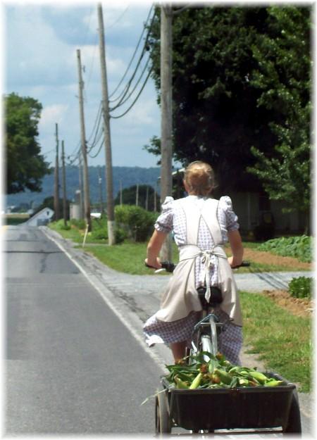 Old order Mennonite girl on bike in Lancaster County PA