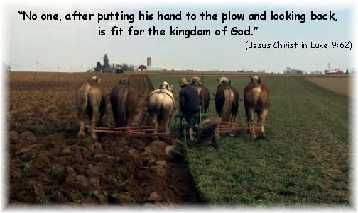 Amish team plowing field near Mount Joy, PA