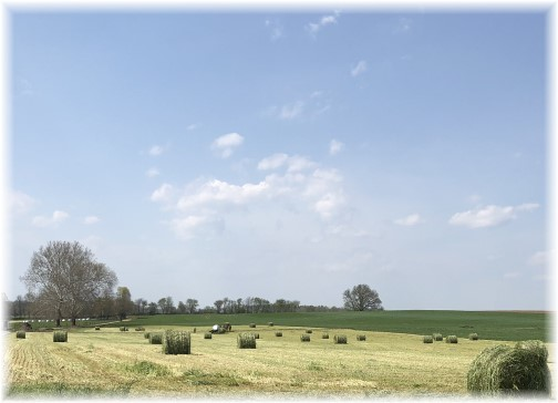 Amish hay harvest, Lancaster County, PA 5/3/18