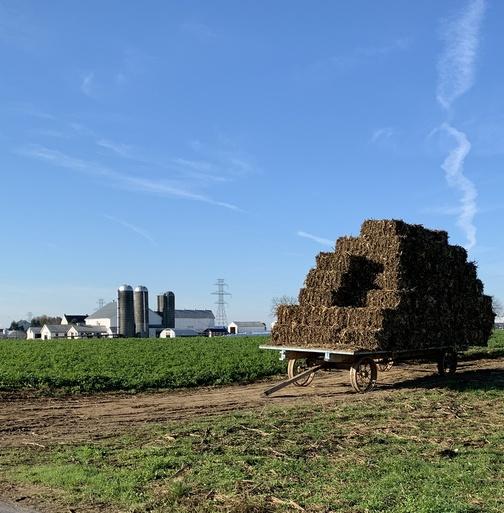 Lancaster County hay wagon