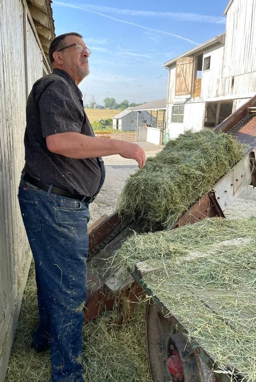 Hay work