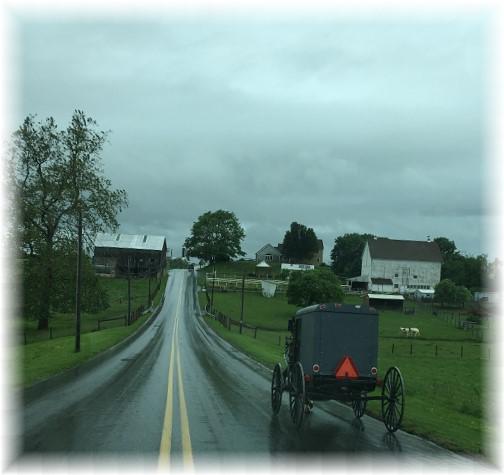 Hollander Road 5/25/17