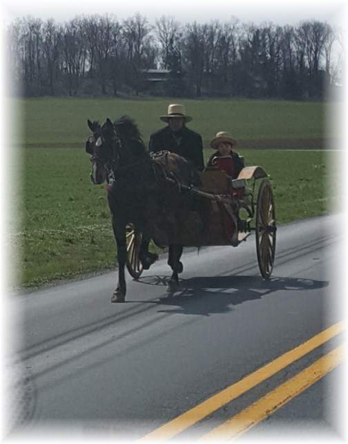 Horse and cart near New Holland, PA 3/16/16