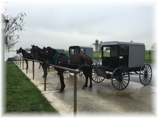 "Horse and buggies ar Amish ""Walmart"" near Bird In Hand, PA 12/29/15"