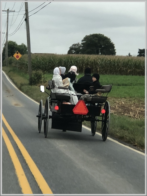 Amish spring wagon, Lancaster County 9/23/18