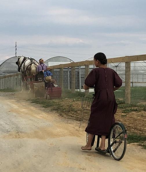 Kraybill Church Road Amish children 9/9/19