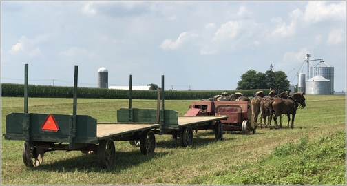 Kraybill Church Road hay harvest 8/7/18 (Click to enlarge)