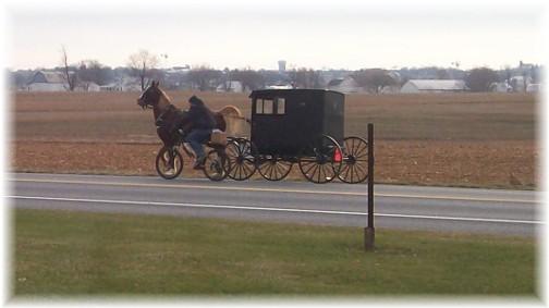 Mennonite bike and buggy