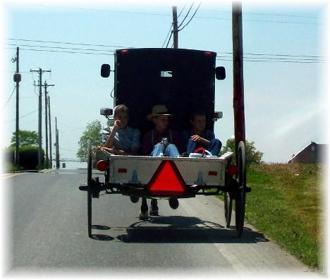 """Old order Mennonite children riding in """"pickup"""""""